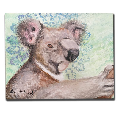 Limited Edition 11x14 Canvas Prints - Koala