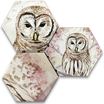 Limited Edition Hexagonal Canvas Print Set - Proud Owl